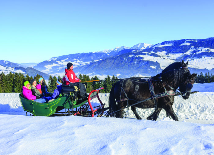 What to do in Italy in Winter: horse drawn sleigh